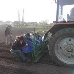 tavaszi-munkálatok-6-150x150